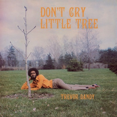 Trevor Dandy - Don`t Cry Little Tree - Vinyl LP