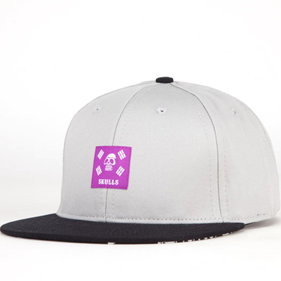 SKULLS X FF Snap Back Cap COI grey